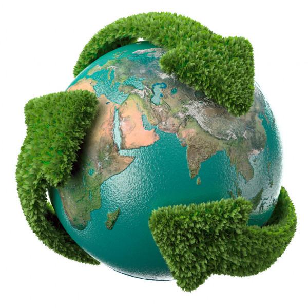 Sustentabilidade - Quanto você ajuda o planeta fazendo um tour virtual?